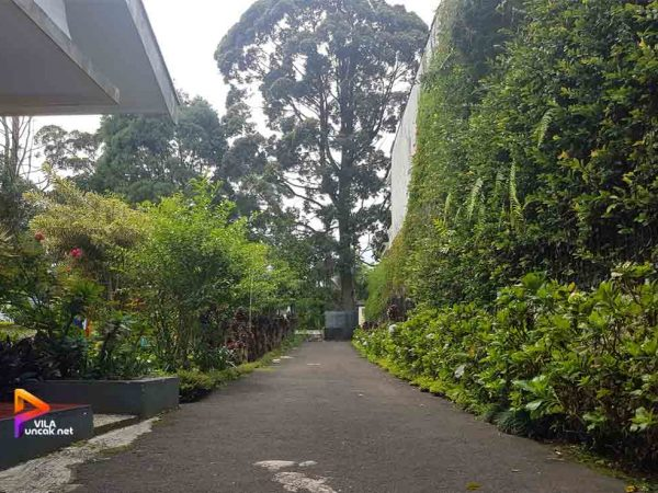 villa lia suasana pedesaan
